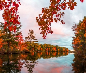 // Throwback Thursday: Fall Climbing